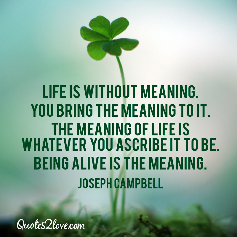 What Is The Meaning Of Life Quotes: Life Is Without Meaning. You Bring The Meaning To It