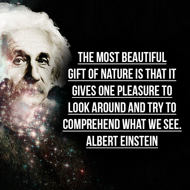 Quotes About Love Einstein : ... - Quotes Einstein Love Quotes Einstein Quotes Happy Einstein Quotes