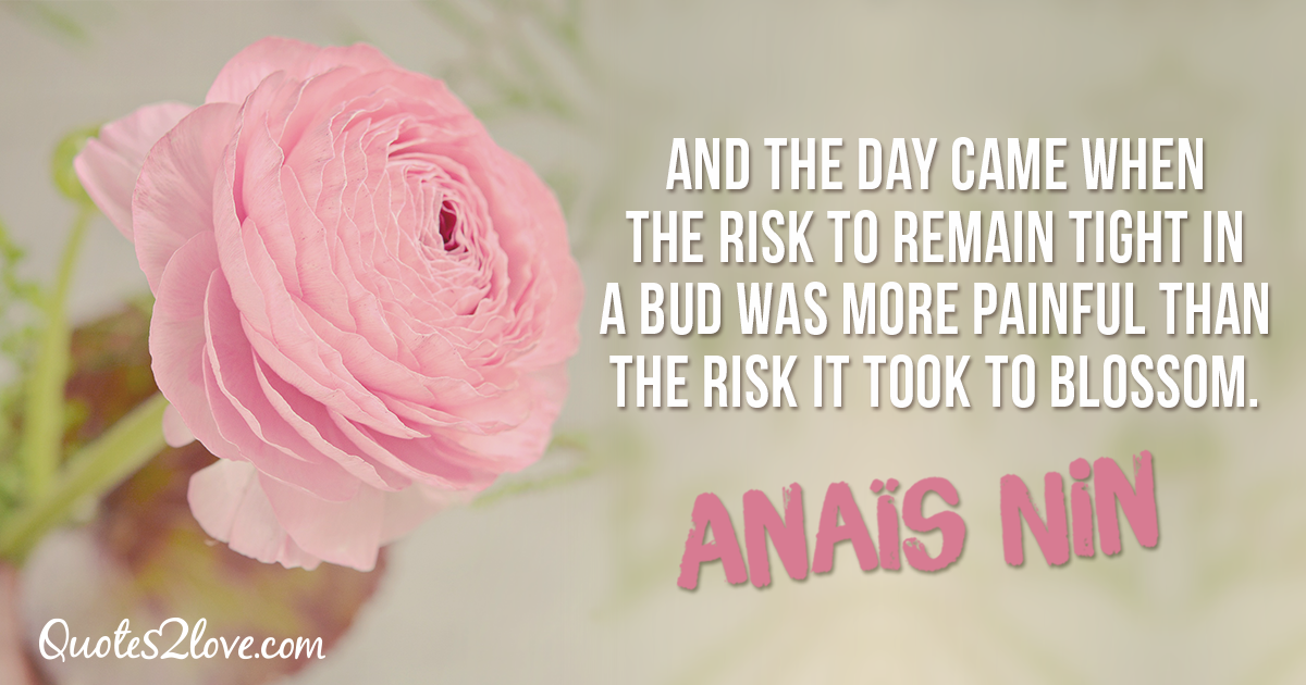 And the day came when the risk to remain tight in a bud was more painful than the risk it took to blossom. – Anaïs Nin